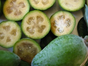 Feijoa-Pictures